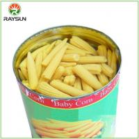 Buy cheap Fresh Organic Canned Whole Baby Corn in Brine from wholesalers
