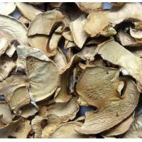 Quality Dehydrated Mushroom Slices for sale