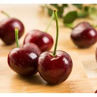 Quality Cherry flavor for sale