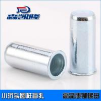 Rivet nuts with small CSK head,cylinder(blind hole)