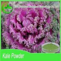 Quality Fruit&Vegetable Extract Kale Powder for sale