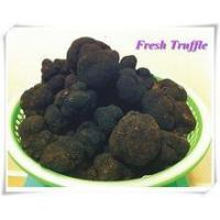 Quality Sell Fresh chinese black truffle for sale