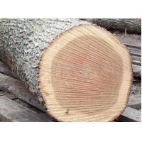 Quality Import logs European red oak for sale