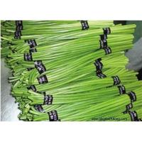 Quality Other Fresh and Frozen Vegetables Product Title:Garlic stem for sale