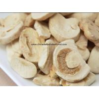 Freeze Dried Mushroom