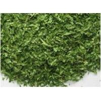 Quality Freeze Dried Parsley for sale