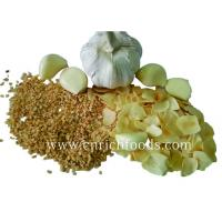 Quality Dehydrated/Dried Garlic for sale