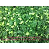 Organic Fruits & Vegetables Organic IQF Green Kale Chopped