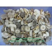 Quality IQF Mushrooms IQF Mixed Mushrooms for sale