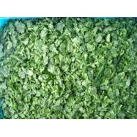 Quality Frozen Spinach RC-FV-015 for sale
