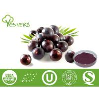 Quality Fruit Powder Acai Berry Powder - Juice Powder for sale