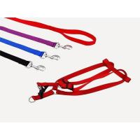Leash and Collars Plain colors/LH