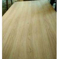 Plywood Series elm wood veneered plywood