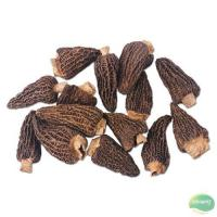 Buy cheap Dried Morel from wholesalers