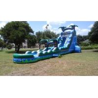 Quality 25 Ft Inflatable Slide for sale