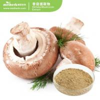 Quality Shiitake Mushroom Powder for sale