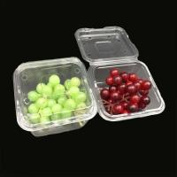 Quality PET disposable blister food clear plastic dry fruit box with lid for sale
